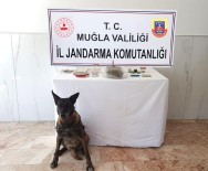 KAYAKÖY - Fethiye'de Uyuşturucu Operasyonu Açıklaması 2 Gözaltı