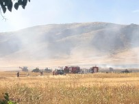 KASRIK - Nusaybin'de Çıkan Yangın Ekinlere Sıçradı