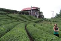 SONSUZLUK - Çay Bahçesi Çay Bahçesi Olalı Böyle İlgi Görmedi