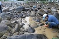 PAZARKÖY - Derenin Yatağı Değiştirilince Balıkları Kurtarmak Köylüye Düştü