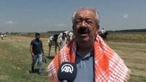 Balıkesir'de Rahvan At Yarışları Yapıldı