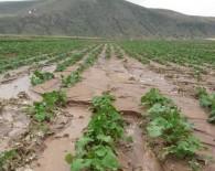 Nevşehir'de 140 Bin Dekar Tarım Arazisi Zarar Gördü