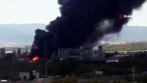 CADIZ - Cebelitarık'ta Rafineri Patladı, Zehirli Duman Tehlikesi Korkuttu
