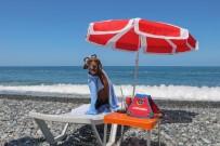 Narkotik Köpeği Vuslat'ın Emeklilik Keyfi