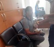 Yavru Dağ Keçisi Güvenlik Korucusu Tarafından Kurtarıldı
