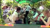 Bozcaada'da Bağ Bozumu Etkinliği