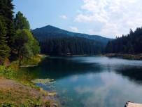 ORMAN VE SU İŞLERİ BAKANI - Sinop'ta Saklı Cennet Açıklaması Akgöl Tabiat Parkı