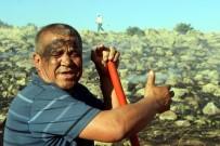 SÜKSÜN - Tarla Yangınında Çiftçilerin 2 Yıllık Emeği Kül Oldu