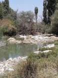 Sakarya Nehir Yatağı Kuruyunca Çiftçilere 5 Gün Sulama Yasağı Getirildi