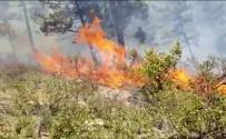 Alaçam Dağları'nda Orman Yangını Başladı