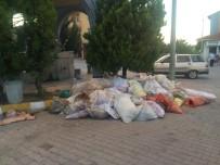 Türk Hava Kurumu Toplanan Kurban Derilerini Almaya Gelmedi