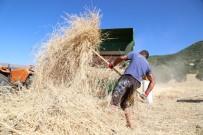 DERSIM - 150 Yıllık 'Ata' Tohumları İçin Harman Etkinliği