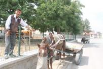 Ağrı'da At Arabacılarının Zorlu Ekmek Mücadelesi