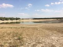 Günyüzü'nde Kuraklık Nedeniyle Sulama Göletleri Kuruyor