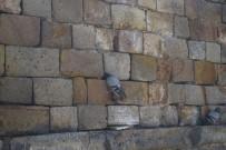 İTFAİYE MERDİVENİ - Kervansaray Duvarına Sıkışan Güvercin Kurtarıldı