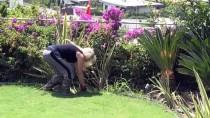 TÜRKAN SABANCı - Ünlülerin Bahçeleri 'Çimin Doktoru Neslihan'dan Soruluyor