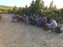 Çanakkale'de 31 Mülteci Yakalandı