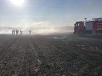 Mardin'de Anız Yangınında Mısır Ekili Tarla Zarar Gördü
