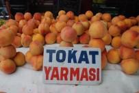 İSMAIL KORKMAZ - Şeftali Tarlada 1-1.5 Lira, Markette 4.95 Lira