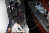 KEMAL AKTAŞ - Rizeli Balıkçılar Umduğunu Bulamadı