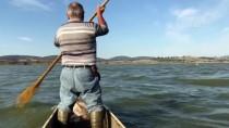 Avladığı Balıkları Pelikanlarla Paylaşıyor