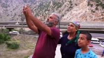 Dağ Keçisi Ve Geyiklere Ziyaretçi İlgisi