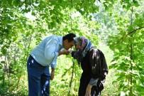 TAHTAKALE - Başkan 91 Yaşındaki Zeynep Nine'nin Elini Öptü Gönlünü Aldı...Ürünlerini Dilediğince Satacak