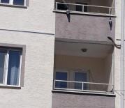 Balkona Gerilen File Güvercinlerin Sonu Oldu
