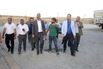 MEHMET POLAT - Eyyübiye'de Yol Yapım Çalışmaları Devam Ediyor