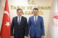 HARUN KARACAN - Rektör Şenocak'tan Bakanlar Pakdemirli Ve Gül'e Ziyaret