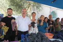 YEŞİM SALKIM - Mudanya'da Bağbozumu Şenliği Yapıldı