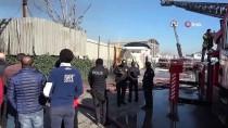 HıZıR - Pendik'te İş Yeri Yangınında Mahsur Kalan Kedi Son Anda Kurtarıldı