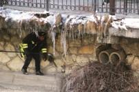 ÇORUH NEHRİ - Çoruh Nehri Kenarında Mahsur Kalan Kediye İtfaiye Kurtardı
