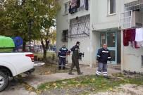 ATAKENT - Adana'da Sivrisinekle Mücadeleye Şimdiden Başlandı