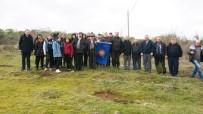 TÜRK HAVA KURUMU - Balyalı Öğrenciler 300 Fıstık Çamını Toprakla Buluşturdu
