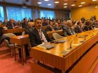 BARBARA - 'Kanal Tokat' Projesi'ne Uluslararası İdealkent Ödülü