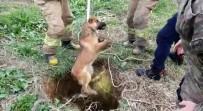 KURTARMA OPERASYONU - Kuyuya Düşen Köpeği Kurtarma Operasyonu Kamerada