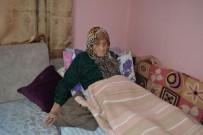 10 KASıM - 107 Yaşındaki Şükriye Nine Hayatını Kaybetti