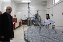 PROPOLIS - Türkiye'de Arıcı Sayısı 60 Bine Yaklaştı
