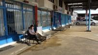 MUSTAFA KARAMAN - Balıkçı Tekneleri Hava Muhalefeti Nedeniyle Denize Açılamayınca Balık Haline De Balık Gelmedi