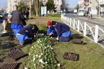 ÇORLU BELEDİYESİ - Belediye Ekipleri Çorlu'yu Güzelleştirmeye Çalışıyor