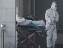 KUŞ GRIBI - Koronavirüsü salgını ABD'ye ulaştı!