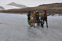 ÇıLDıR GÖLÜ - Ardahan'da Gölde Atlı Kızak Keyfi