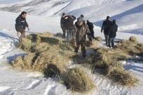 Yaban Hayvanları İçin Emirdağları'na Yem Bırakıldı