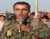 ATAOL BEHRAMOĞLU - HDP'li Piroğlu'nun DHKP-C sevdası