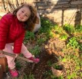 EROZYONLA MÜCADELE - 'Toprak Dede' İçin Fidan Diktiler