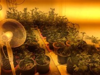 GÜNEŞ IŞIĞI - Kuşadası'nda Uyuşturucu İmalatcısına Operasyon