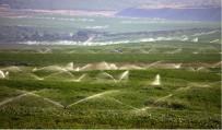 MEVLÜT AYDIN - Toprak Verimli Kullanılacak Ekonomiye Katkı Sunulacak