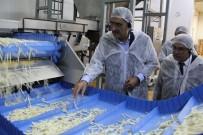 BARBUNYA - Başkan Konuk Açıklaması 'Bir Tesis Yapıldı, Konya Şeker Patates Üretimini 10 Yılda 3'E Katladı'