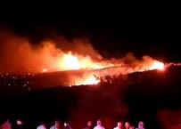 ASKERİ UÇAK - Cezayir'de Askeri Uçak Düştü Açıklaması 2 Ölü